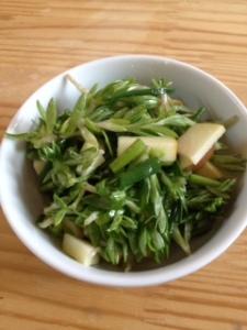 Stonecrop salad